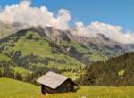 Berner Oberland Hotel zu verkaufen 1